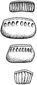 Bestämning av kackerlacka utifrån äggkapslar