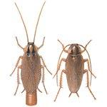 Tysk kackerlackor