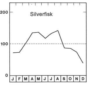 Säsong för silverfisk
