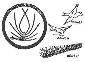Taggtråd för bekämpning och förebyggande åtgärd mot duvor